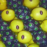 Limones: Eureka