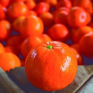 Mandarins: Okitsu, Satsuma, Clementina, Nova clemenville, Ellendale, Murcott