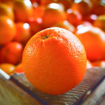 Oranges: Navelina, Washington navel, Lane late, Valencia seed less, Valencia late, Salustiana